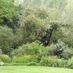 Jardins de kerlouis (1)