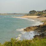 plages de Saint jacut 150505 (12)