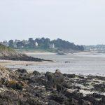 plages de Saint jacut 150505 (22)