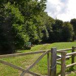 ruisseau d'argentel pt 11