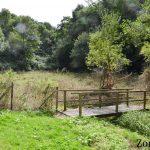 ruisseau d'argentel zone14 (16